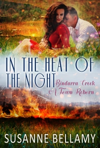 BC_in the heat of the night ebook cover
